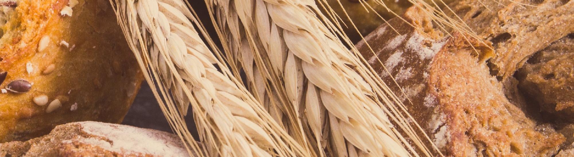 Ruokahävikki rasittaa taloutta ja ympäristöä_2-1-3